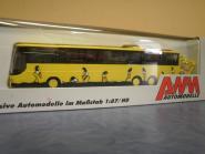 AWM Reisebus Setra S 319 GT-HD gelb mit Rabenaufdruck