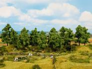 Noch Laubbäume 8 Stück, 10 -14 cm 24600