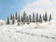 Noch Schneetannen, 25 Stück, 5 - 14 cm hoch 26828