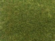 NOCH Wildgras mittelgrün, 9 mm, 50 g 07118