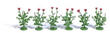Busch 6 Klatschmohnpflanzen H0 1248