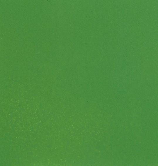 Noch Acrylspray matt, hellgrün
