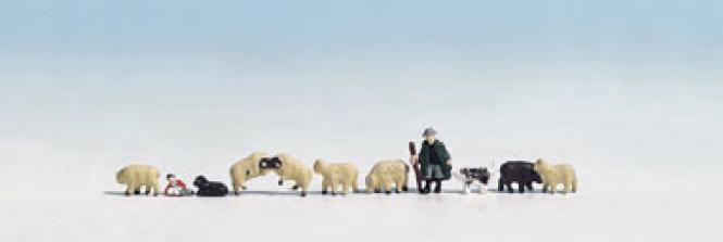 Noch Schäfer und Schafe